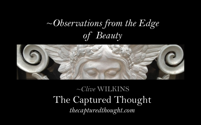 observations-from-the-edge-of-beauty-title